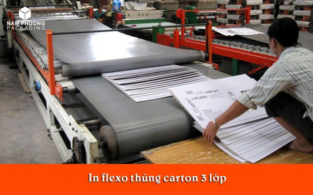 in flexo thung carton 3 lop