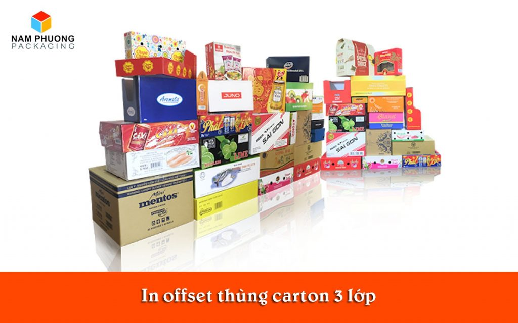 in offset thung carton 3 lop