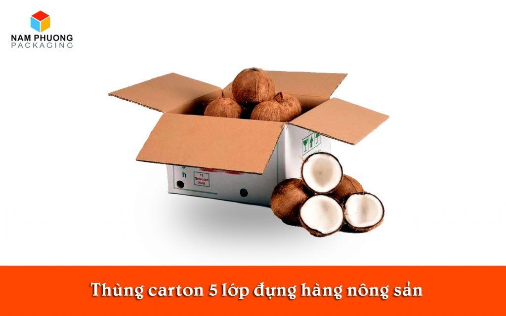 Thùng carton 5 lớp đựng hàng nông sản