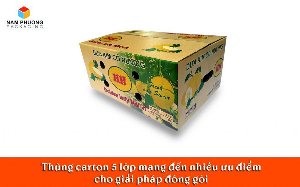 Thùng carton 5 lớp mang đến nhiều ưu điểm cho giải pháp đóng gó