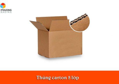thung carton 5 lop tphcm