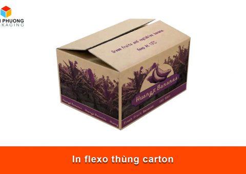 In flexo thùng carton